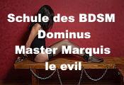 Schule des BDSM